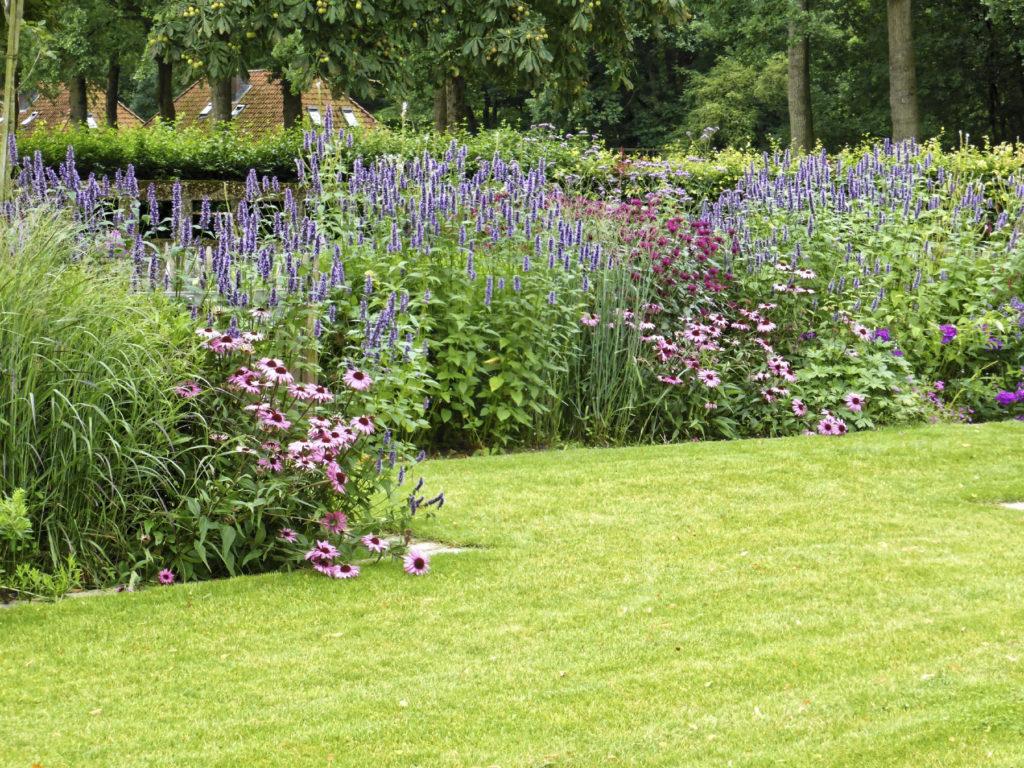 Reggy Horsthuis, landelijke tuin