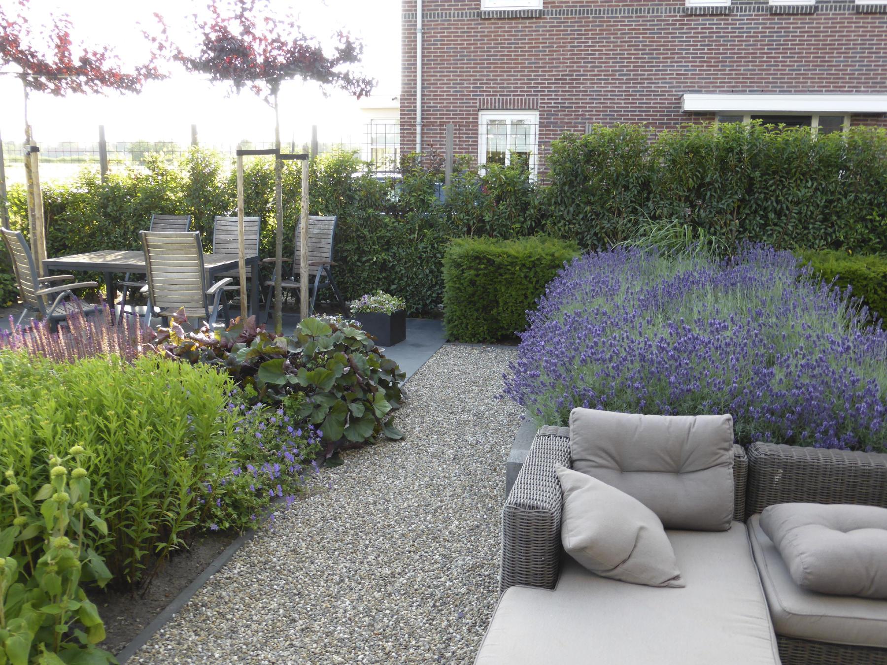 Reggy Horsthuis Moderne tuin Leusden